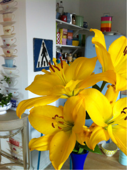 A yellow reminder on a rainfully day