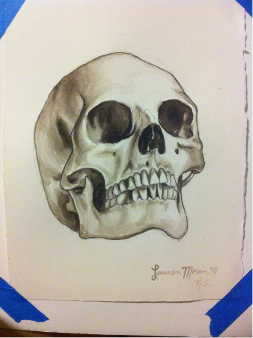 human skull in watercolor.   taking commissions! email me at laurenmoranforever@gmail.com for info.
