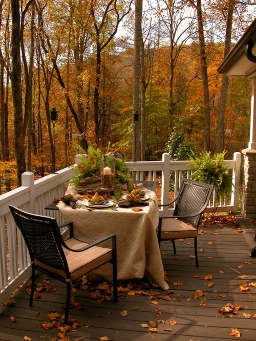 colorlifebeautifully:  ablogwithaview:  Autumn!  How could anyone dislike fall; just looking at this makes me feel excited for the season.