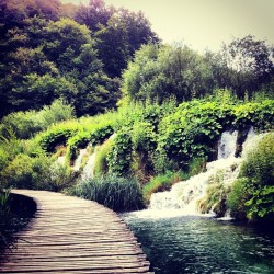 #landscape #lakes #water #plitvice #plitvika #croatia #trees #bridge #waterfalls  (Taken with Instagram)