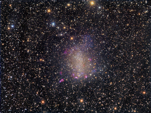 NGC 6822 Through a Veil of Galactic Cirrus  This image shows a deep view of Barnard's Galaxy (NGC 6822), an irregular dwarf galaxy that is one of the nearest neighbours to our Milky Way.  This galaxy was discovered by astronomer Edward E. Barnard in 1884 and is located about 1.6 million light years away in the constellation Sagittarius. Despite boasting a meagre 10 million stars, and extending only one tenth the size of our Milky Way, NGC 6822 contains a full menagerie of hot red star forming HII regions, planetary nebulae, bright OB associations and dark clouds.