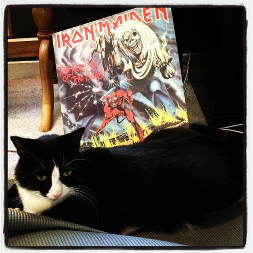 Marvin has good taste. #ironmaiden #numberofthemarvin (Taken with Instagram)