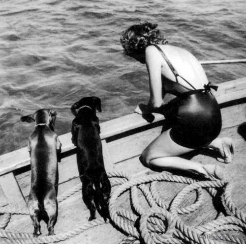 "garconniere:  credit?  Haha, awesome, two in one day! This is Toni Frissell, ""Woman and Two Dachshunds, Vogue, 1939."""