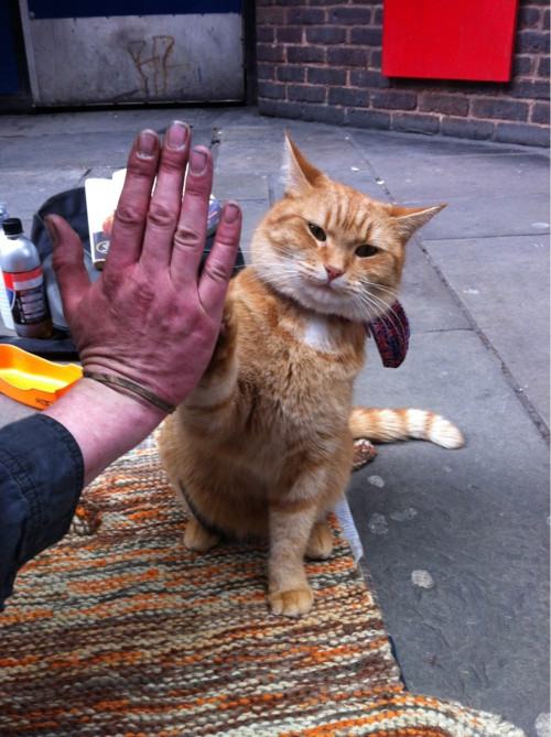 High Five, Bro!