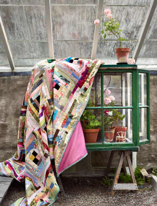 shabby greenhouse