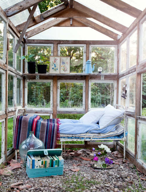 nesting in a greenhouse with a distressed bed and some very old books