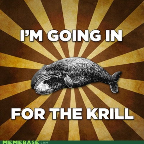 So much ferocity! the-flibbertigibbet:  A quote from the skrillex whale.