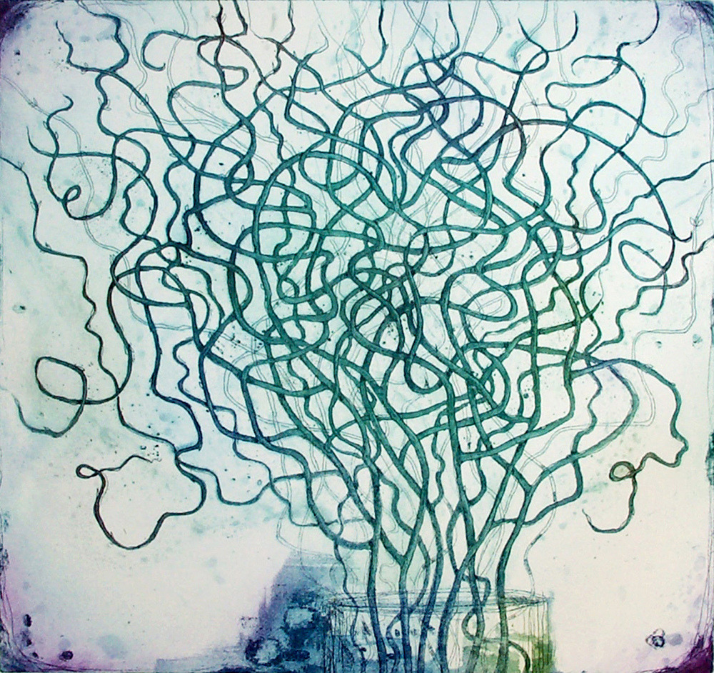 flickr.com:photos:fiona-watson Fiona Watson, curly willow, etching 46 x 43 cm on 300 g Somerset paper