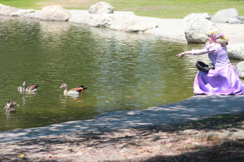 aurorahermione:  Rapunzel was very excited to see ducks, especially the baby ones! Rapunzel- Me Picture taken by Jane Lee