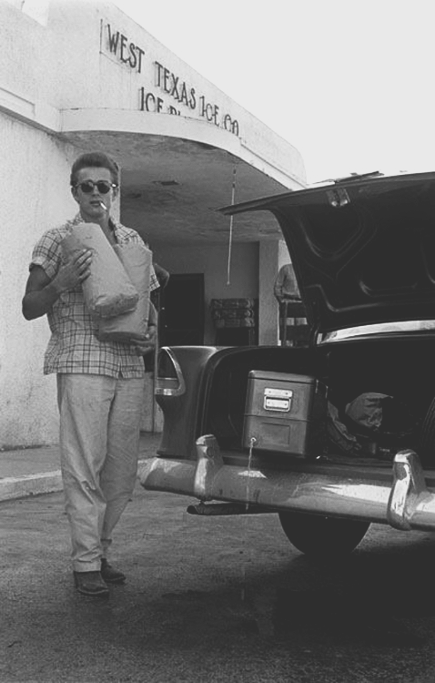 jimmydean-jamesdean:  51/100 → James Dean