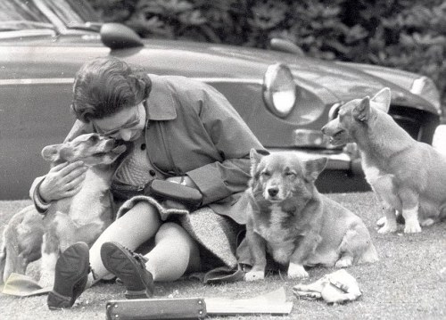 Queen Elizabeth II with her dogs, circa 1960s.