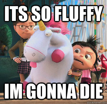Its so FLUFFY!