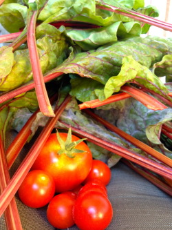 Today's Harvest from my Deck-a-Garden: Tomatoes and Chard I cooked the chard for dinner w/garlic and black beans: Southwest-ish Greens & Beans.