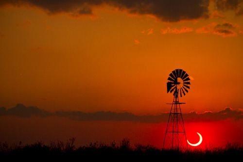 2012 Annular Solar Eclipse - Lubbock, Texas by unripegreenbanana on Flickr.