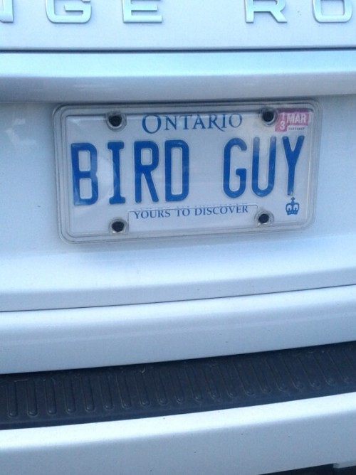 I would like to be friends with this person and maybe steal his license plates.