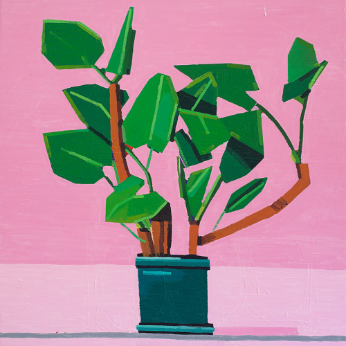 michaelswaney: Guy Yanai, Plant on Pink, 2012. 80 x 80 cm