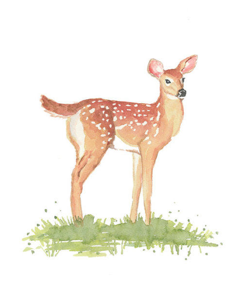 blessings-and-honour:  (via Deer Watercolor Deer Illustration WhiteTailed by WaterInMyPaint)