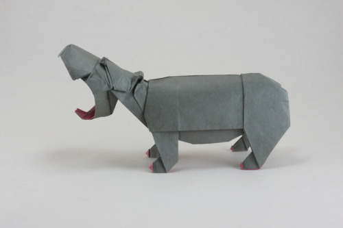 Origami Animals by Quentin Trollip It's amazing to think that all these origami animals were created out of a single uncut sheet of square paper. Although often two different coloured pieces of washi paper had to be stuck to each other to give added detail to the animals which are multicoloured.   Artists: Website | Flickr | [via: Bashment Lox]