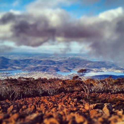 theforestbythesea:  Hobart, Tasmania (Taken with Instagram)
