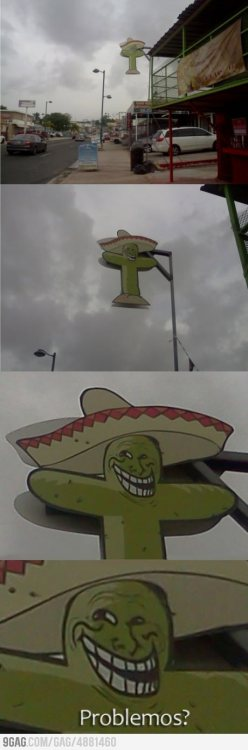 Meanwhile in Mexico from 9GAG by 9GAG Reader (9g.re)
