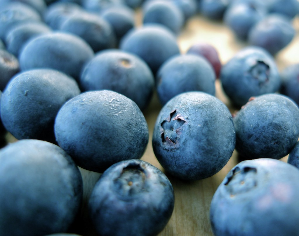 Blueberries are in the Eriaceae family, and members are found around the world. Commercially sold blueberries, however, are native to North America.