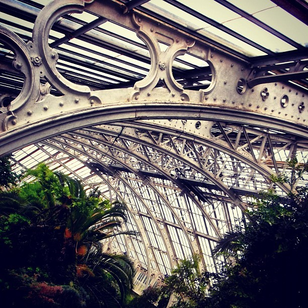 #frame #iron #victorian *palmhouse #palm #gardens #greenhouse #london #kewgardens #plants #ironwork #tropial #thatmfeeling  (Taken with Instagram)
