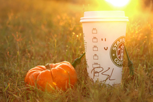 glorious-autumn:  Starbucks Pumpkin Spice Latte by klynnphotography on Flickr.