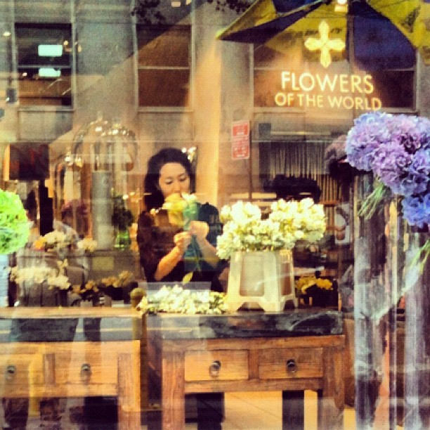 Arranging flowers #flowersoftheworld #nyc #manhattan  (Taken with Instagram)