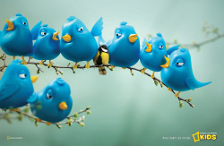 Kool Ad: National Geographic Kids Magazine - Twitter Birds (Source: ibelieveinadv.com)