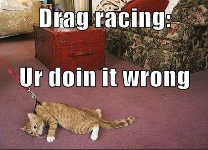 cute-overdose:  Drag racingmore cute here