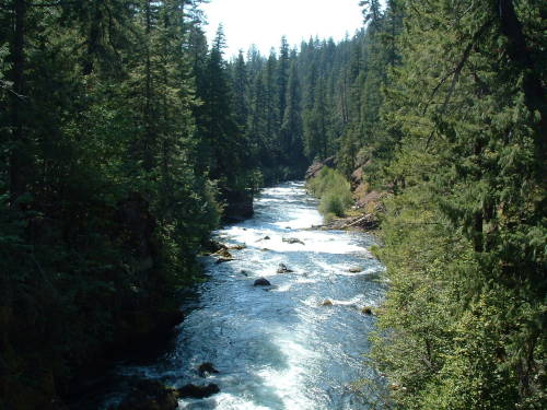 phenomenallyspectacular:  Rogue River II