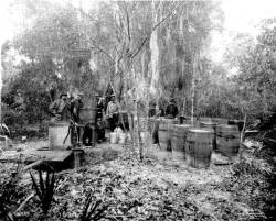 Raiding moonshine in Tampa, 1920.