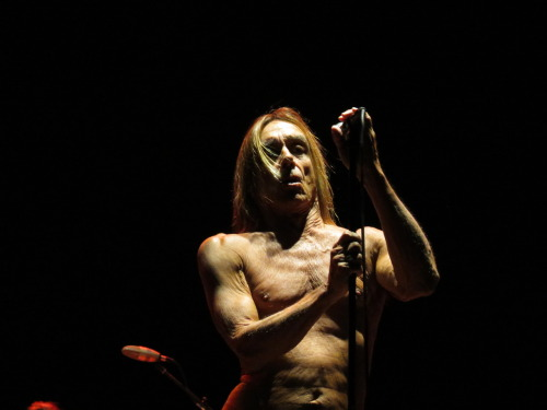 Iggy Pop at the Greenville Music Festival in Berlin, July 29 2012. (My photo.)