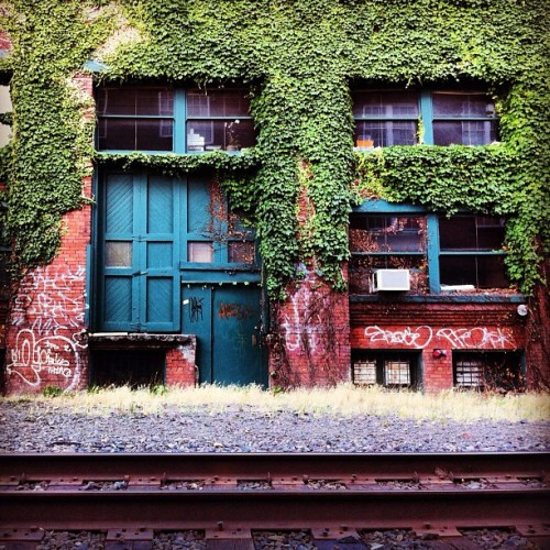 #brick #brickporn #vine #vines #door #doorporn #rail #pdx #sepdx #tags #texture  (Taken with Instagram)