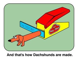 And that's how dachshunds are made.