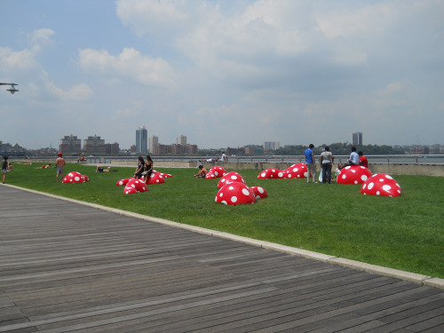 Kusama at Hudson river park