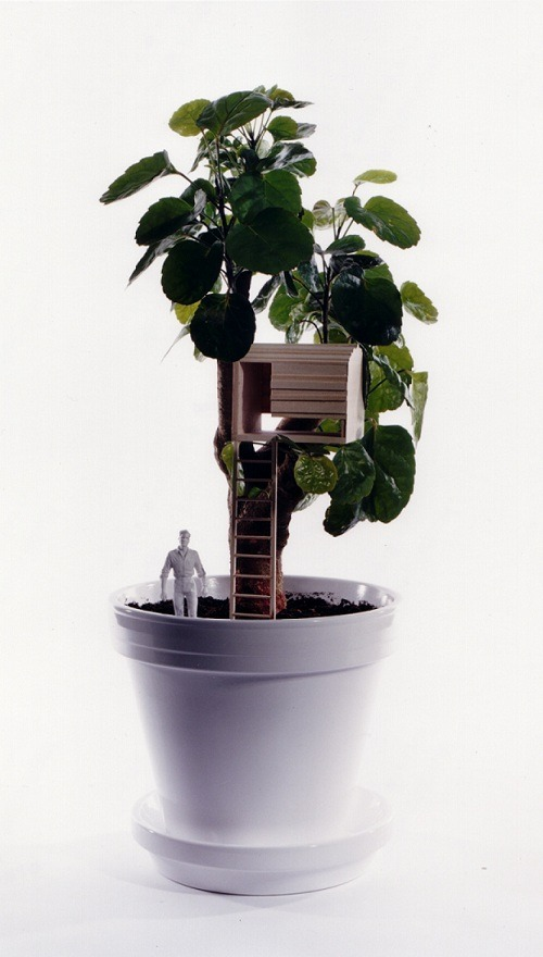 Tree house plants by taf SO COOL