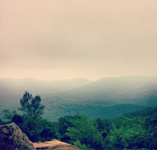 View from Bear Mountain summit through the fog.