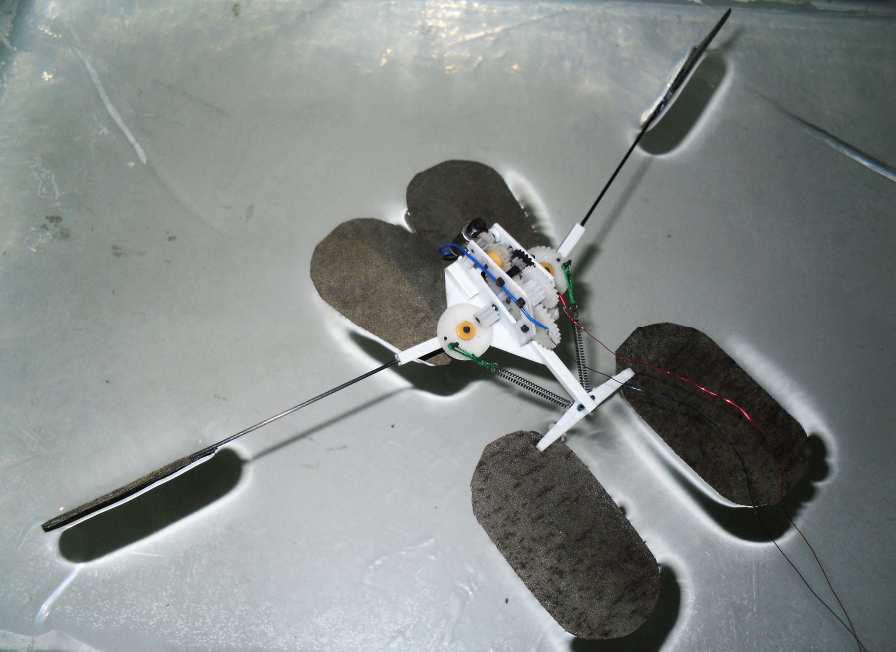 cozydark:  Water Strider Robot | The first bio-inspired microrobot capable of not just walking on water like the water strider — but continuously jumping up and down like a real water strider — now is a reality. Scientists reported development of the agile microrobot, which could use its jumping ability to avoid obstacles on reconnaissance or other missions, in ACS Applied Materials & Interfaces. Qinmin Pan and colleagues explain that scientists have reported a number of advances toward tiny robots that can walk on water. Such robots could skim across lakes and other bodies of water to monitor water quality or act as tiny spies. However, even the most advanced designs — including one from Pan's team last year — can only walk on water. Pan notes that real water striders actually leap. Making a jumping robot is difficult because the downward force needed to propel it into the air usually pushes the legs through the water's surface. Pan's group looked for novel mechanisms and materials to build a true water-striding robot. Using porous, super water-repellant nickel foam to fabricate the three supporting and two jumping legs, the group made a robot that could leap more than 5.5 inches, despite weighing as much as 1,100 water striders. In experiments, the robot could jump nearly 14 inches forward — more than twice its own length — leaving the water at about 3.6 miles per hour. The authors report that the ability to leap will make the bio-inspired microrobot more agile and better able to avoid obstacles it encounters on the water's surface. The authors acknowledge funding from the State Key Laboratory of Robotics and System of Harbin Institute of Technology and the National Natural Science Foundation of China.
