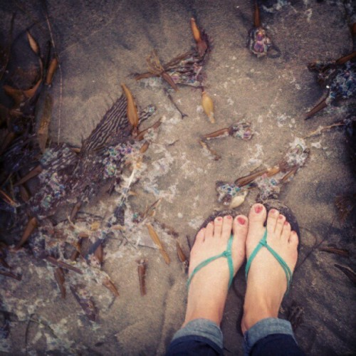 back to beach life #seaweed #seafoam #bubbles #sand #feet #fromwhereistand  (Taken with Instagram)