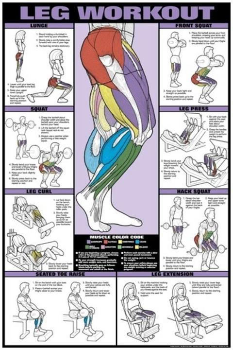 artfitnessfunny:  For great legs…
