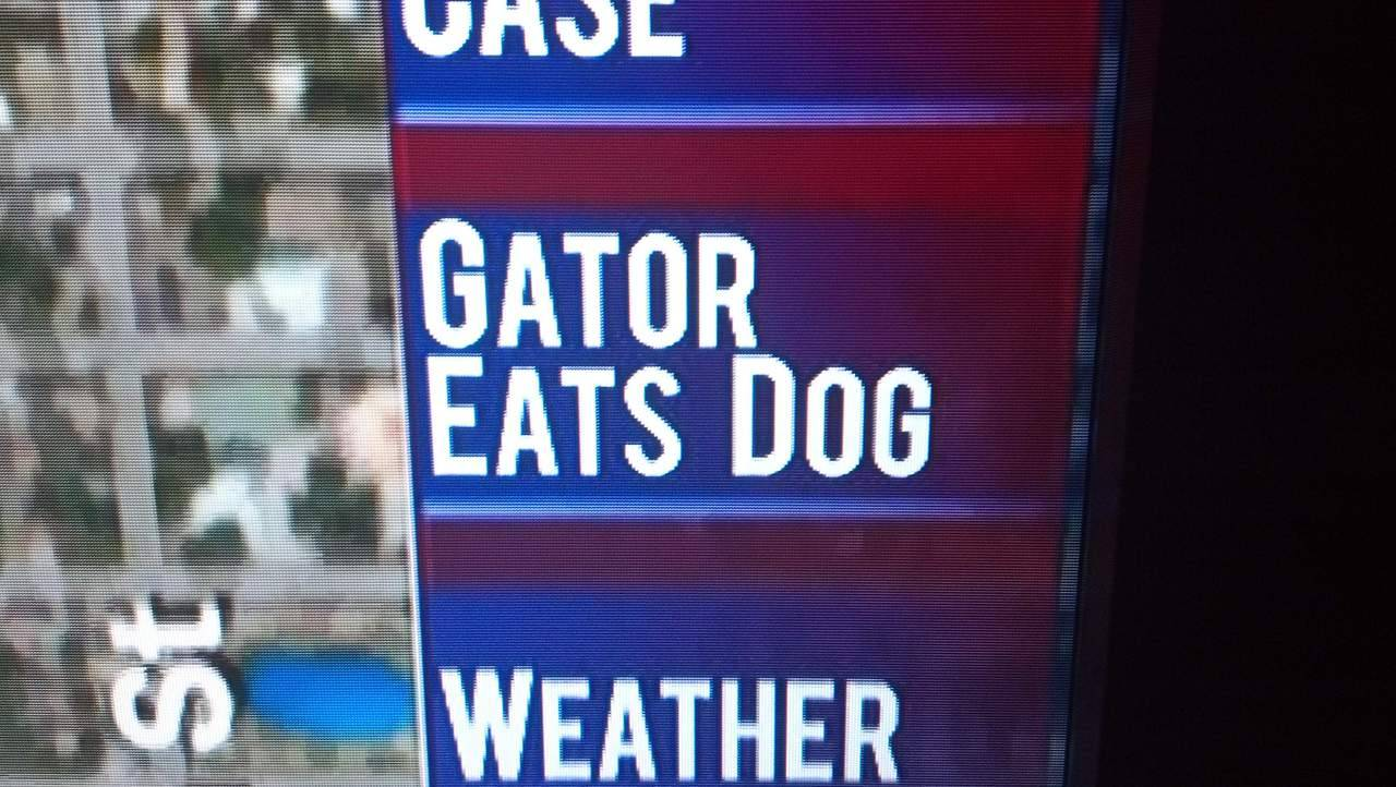 fuckingflorida:  'nuf said.