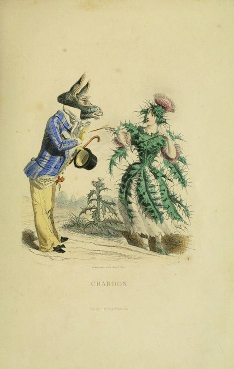 mudwerks:  (via The Flowers Personified (1847) | The Public Domain Review)  Images by the great Parisian cartoonist J.J Grandville from his Les Fleurs Animées – his last work, originally published posthumously in 1847, the year of his death. With its mix of the satirical and poetic, the book is considered to be one of his most supreme achievements.