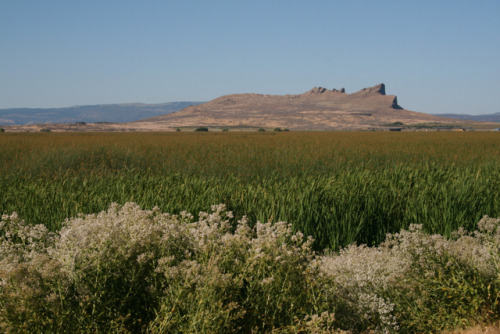 TULE LAKE (pronounced 2-Lee)©Laura Quick Gorgeous watershed area outside of Lava Beds National Monument (on the border of California and Oregon). The sheer drop on the cliff in the distance is actually a Petroglyph Wall with 5,000 ancient carvings (and maybe 10,000 modern day carvings)