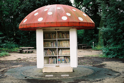 photos1997:  ♥.♥  I want a little free library like this!