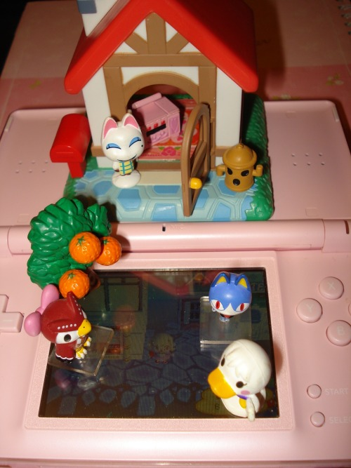 paradisecrossing:  I have an advance copy of Animal Crossing 3DS.