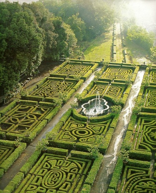 beautiful maze