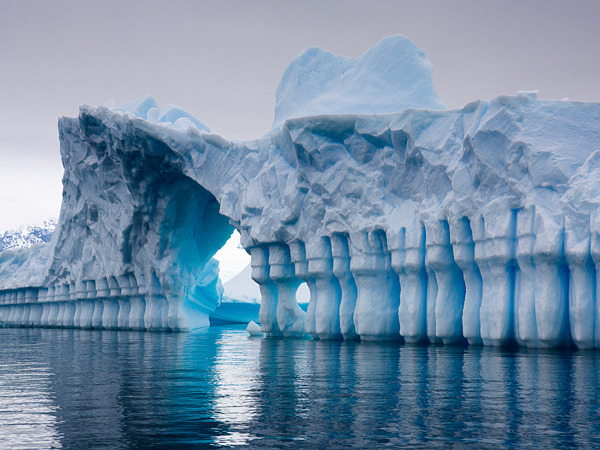 Pleneau Bay, Antarctica; photograph by Sander Klaassen
