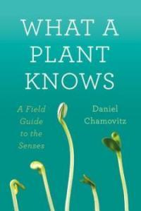 (via Tel Aviv University researcher says plants can see, smell, feel, and taste) Our understanding of the varieties of sentience continues to expand.