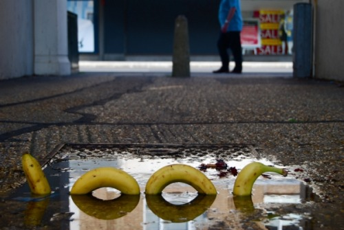 marjoree:  The Loch Ness banana is real, man.